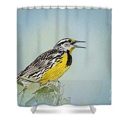 Western Meadowlark Shower Curtain