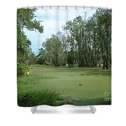 Wet Feet Shower Curtain by Mark Robbins