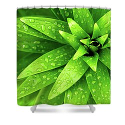 Wet Foliage Shower Curtain