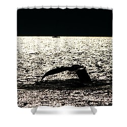 Whale In Sunset Shower Curtain by Paul Ge