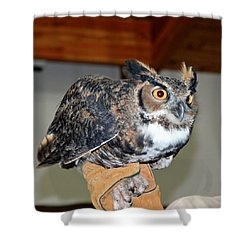 What A Hoot Shower Curtain by LeeAnn McLaneGoetz McLaneGoetzStudioLLCcom