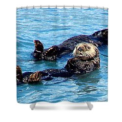 Shower Curtain featuring the photograph Whatchu Looking At by Kathy  White