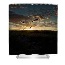 Wheat Fields  Shower Curtain by Beverly Cash