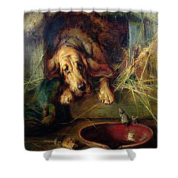 When The Cat's Away The Mice Will Play  Shower Curtain by Philip Eustace Stretton