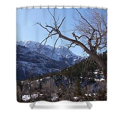 Where Dreams Begin Shower Curtain by Dorrene BrownButterfield