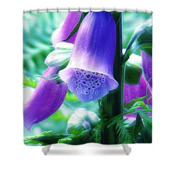 Where Fairies Live Shower Curtain by Rory Sagner