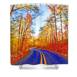 Where The Road Snakes Shower Curtain by Douglas Barnard