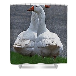 Which Way Shower Curtain by Lisa Phillips