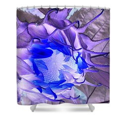 Whisper Blues Shower Curtain