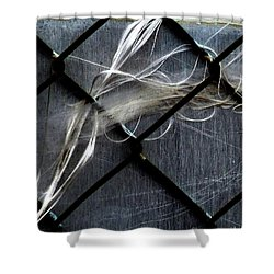 Shower Curtain featuring the photograph Whispered by Newel Hunter