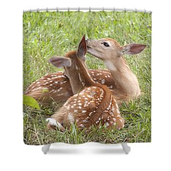 Whispering Fawns Shower Curtain