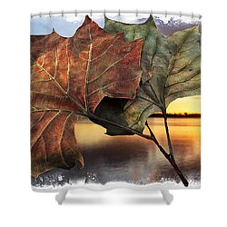 Whispers In The Wind Shower Curtain by Debra and Dave Vanderlaan