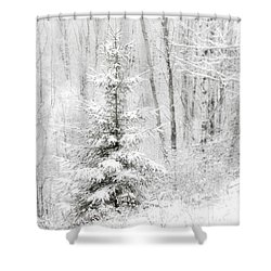 Whispers The Snow Shower Curtain