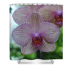 White And Pink Orchid Shower Curtain