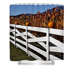 White Fence With Pumpkins Shower Curtain by Garry Gay