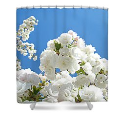 White Floral Blossoms Art Prints Spring Tree Blue Sky Shower Curtain by Baslee Troutman