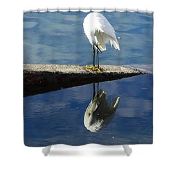White Heron Shower Curtain by Anne Mott