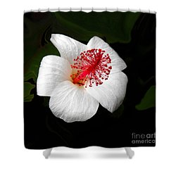 Shower Curtain featuring the photograph White Hibiscus Flower by Rebecca Margraf