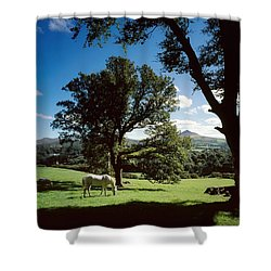 White Horse At Powerscourt, Co Wicklow Shower Curtain by The Irish Image Collection