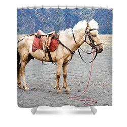 White Horse Shower Curtain by Yew Kwang