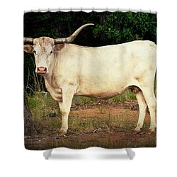White Longhorn Shower Curtain by Tamyra Ayles
