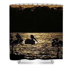 Shower Curtain featuring the photograph White Pelican Evening by Dan Friend