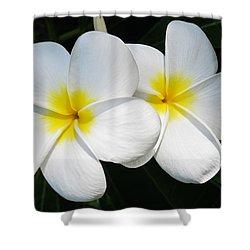 White Plumerias Shower Curtain