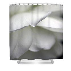 White Rose Flower Petals Shower Curtain by Jennie Marie Schell