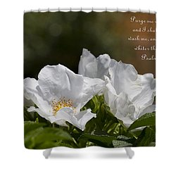 White Roses - Purge Me With Hyssop Shower Curtain by Kathy Clark