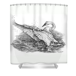 Shower Curtain featuring the drawing White Swan - Dreams Take Flight by Kelli Swan