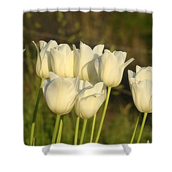 White Tulip Flowers Art Prints Spring Green Garden Shower Curtain by Baslee Troutman