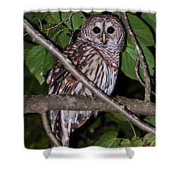 Who Are You Shower Curtain by Cheryl Baxter