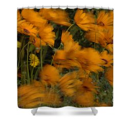 Who Has Seen The Wind Shower Curtain by Bob Christopher