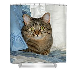 Wide Eyed Shower Curtain