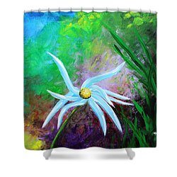 Wild Daisy 2 Shower Curtain by Kume Bryant
