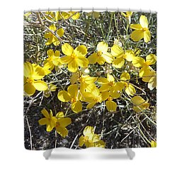Wild Desert Flowers Shower Curtain by Kume Bryant