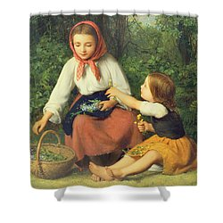 Wild Flowers Shower Curtain by William Charles Thomas Dobson