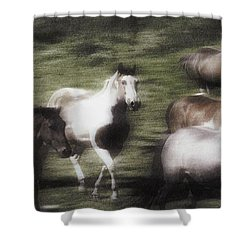 Wild Horses On The Move Shower Curtain by Don Hammond