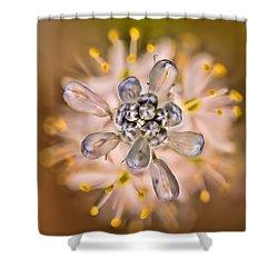 Wild Hyacinth Shower Curtain