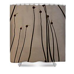 Wild Onions Shower Curtain by Stelios Kleanthous