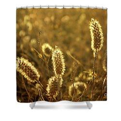 Wild Spikes Shower Curtain by Carlos Caetano
