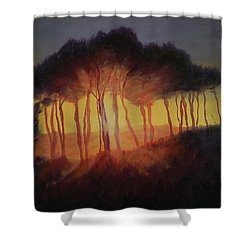 Wild Trees At Sunset Shower Curtain by Antonia Myatt
