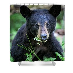 Wildflower Bear Shower Curtain