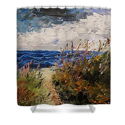 Wildflowers And Wind Shower Curtain