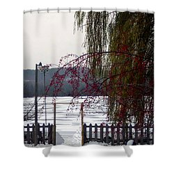 Willows And Berries In Winter Shower Curtain by Desiree Paquette