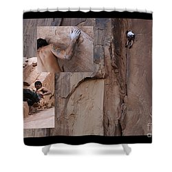 Willpower No Caption Shower Curtain by Bob Christopher