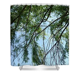 Wind In The Willow Shower Curtain by Alys Caviness-Gober
