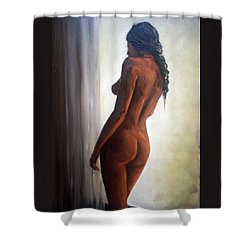 Window Light Shower Curtain