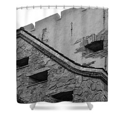 Windowed Wall Shower Curtain