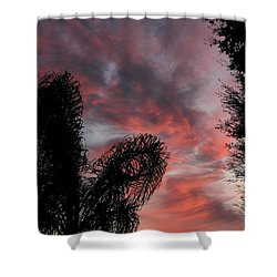 Windswept Clouds Shower Curtain